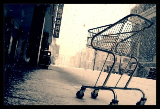shopping_cart_by_geckokid