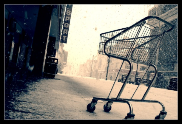 shopping_cart_by_geckokid